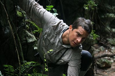 Bear_on_cliff_ledge